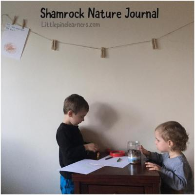 Help your kindergartener learn the basics of documenting their learning with this nature journal idea.
