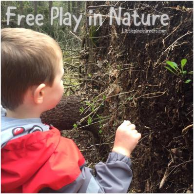 Read about the benefits of free play in nature. Get outdoors and rewild your child today!.jpg