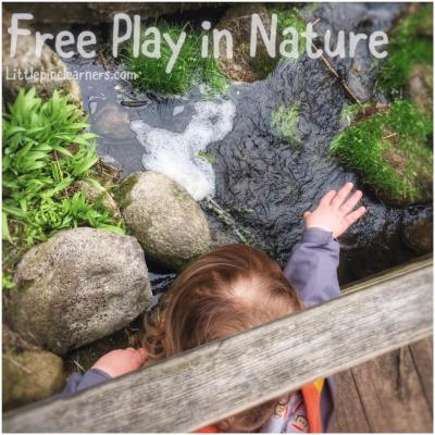 Read here about the benefits of free play in nature. Get outdoors and rewild your child today.