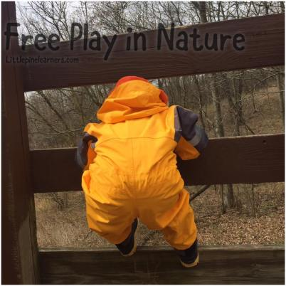 Read here about the benefits of free play in nature. Get outside and rewild your child today!