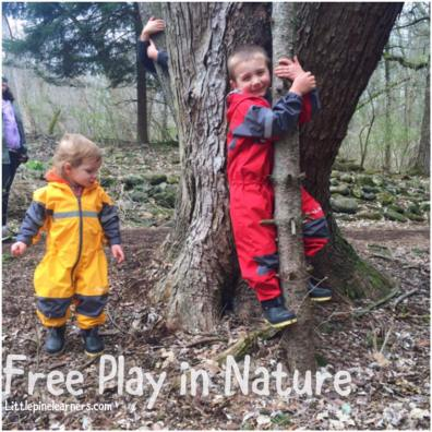 Read here about the benefits of free play in nature. Get outside and rewild your child!