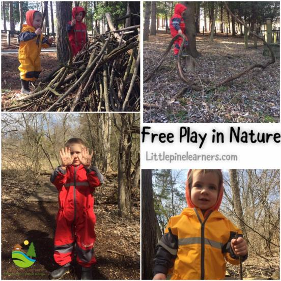 Read here about the benefits of free play in nature. Get your wild child outdoors!.jpg