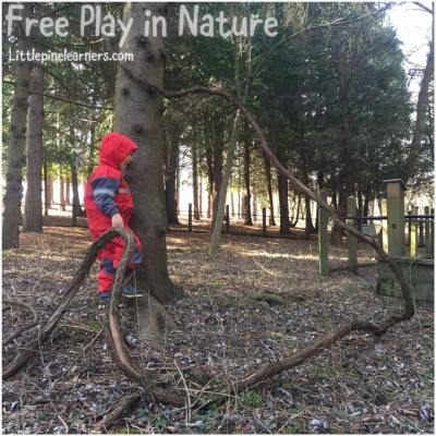 Read here about the benefits of free play in nature. Rewild your child today!