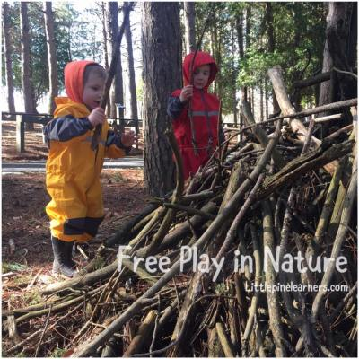 Read here about the benefits of free play in nature. Rewild your child!