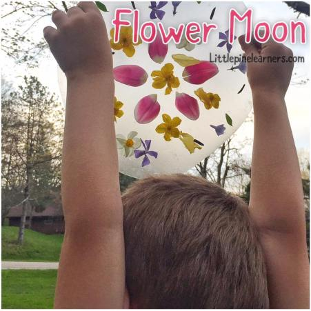 Celebrate May's Flower Moon with your little nature lover. Such fun activities! .jpg
