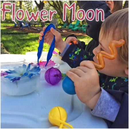 Celebrate May's Flower Moon with your little nature lover. Visit littlepinelearners.com for more activity ideas!.jpg