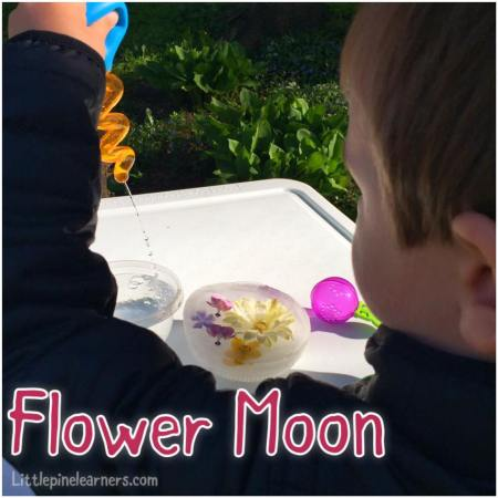 Celebrate May's Flower Moon with your little nature lover. Visit littlepinelearners.com for more fun!.jpg