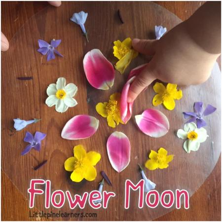 Celebrate May's Flower Moon with your little nature lover. Your child will love these activities!.jpg