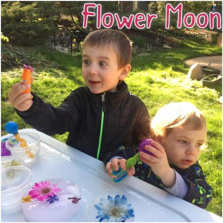 Celebrate May's Flower Moon with your little nature lover. Your child will love these fun activities!.jpg