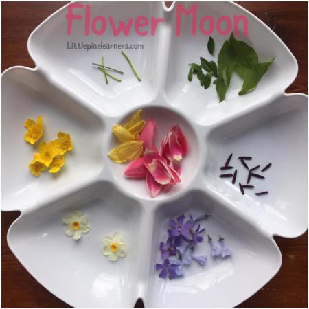 Celebrate May's full moon with these fun Flower Moon activites. Your little nature lover will have so much fun!.jpg