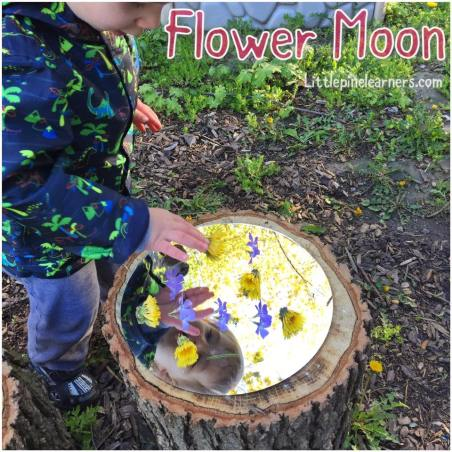 Here are four ways to celebrate May's Flower Moon with your little nature lover!.jpg